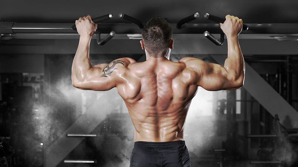 what is trenbolone used for